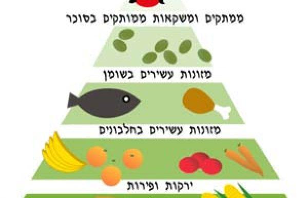 פירמידת המזון לילדים